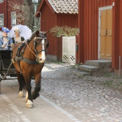 Belgaraf i gamla Linköping